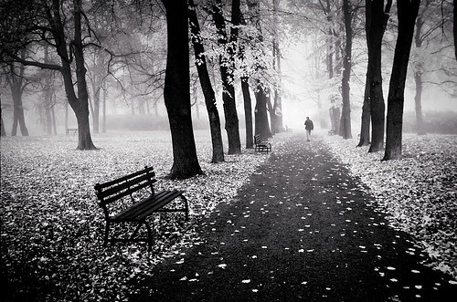 walking in park alone
